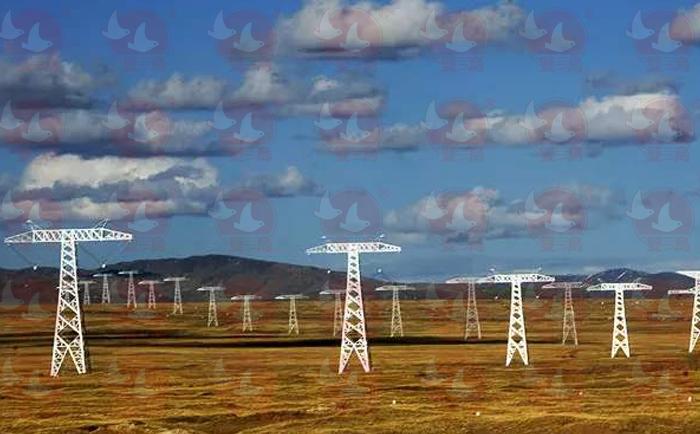 电力行业使用双鸟电动葫芦